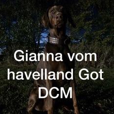 Gianna vom Havelland