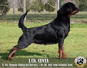 Centa (HKS/HR 15941)