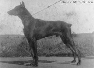 Roland van Martha's Hoeve