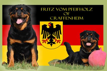 Fritz vom Pfeifholz