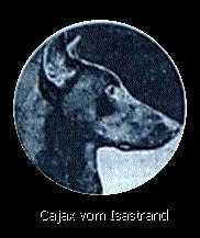 Cajax vom Isarstrand
